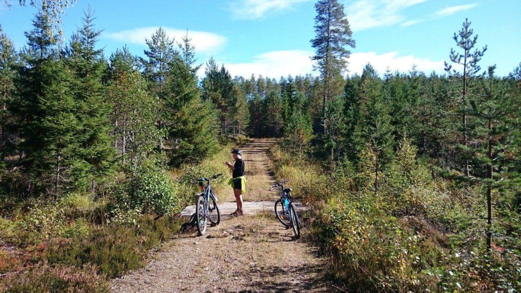 Person och cyklar i skogen