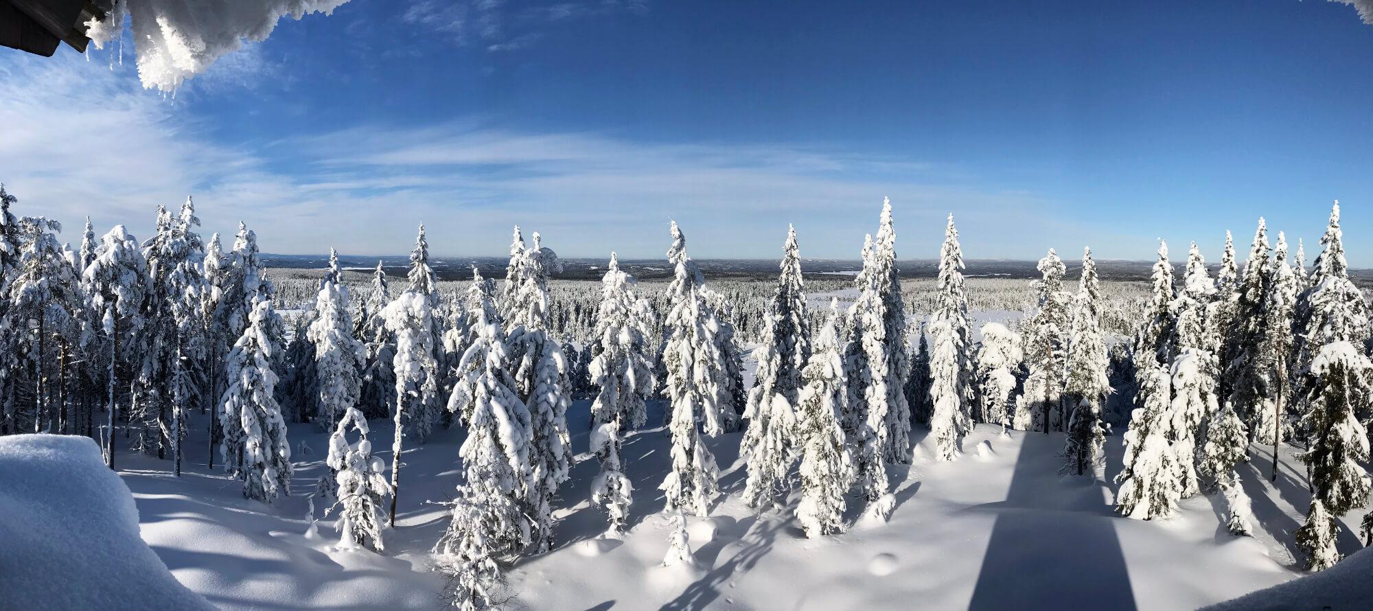 Utsikt från Brännbergstornet på vintern