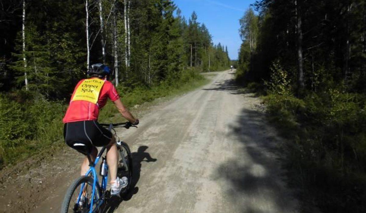 Cyklist på gruväg i skogen