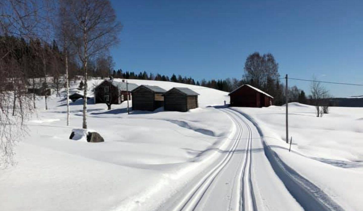 Skidspår mot hus i vinterlandskapet