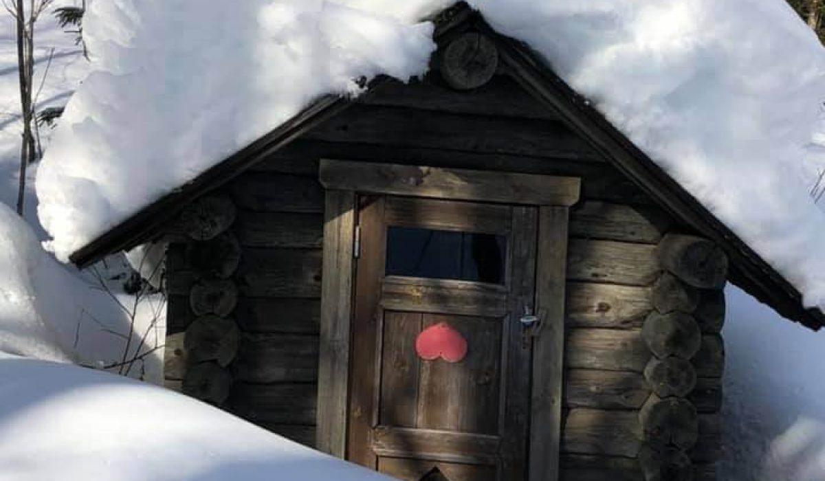 Dasset fullt av snö