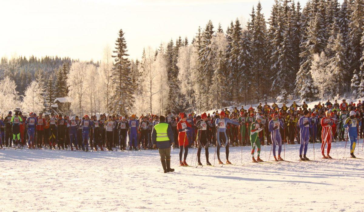 Skidåkare på startlinjen