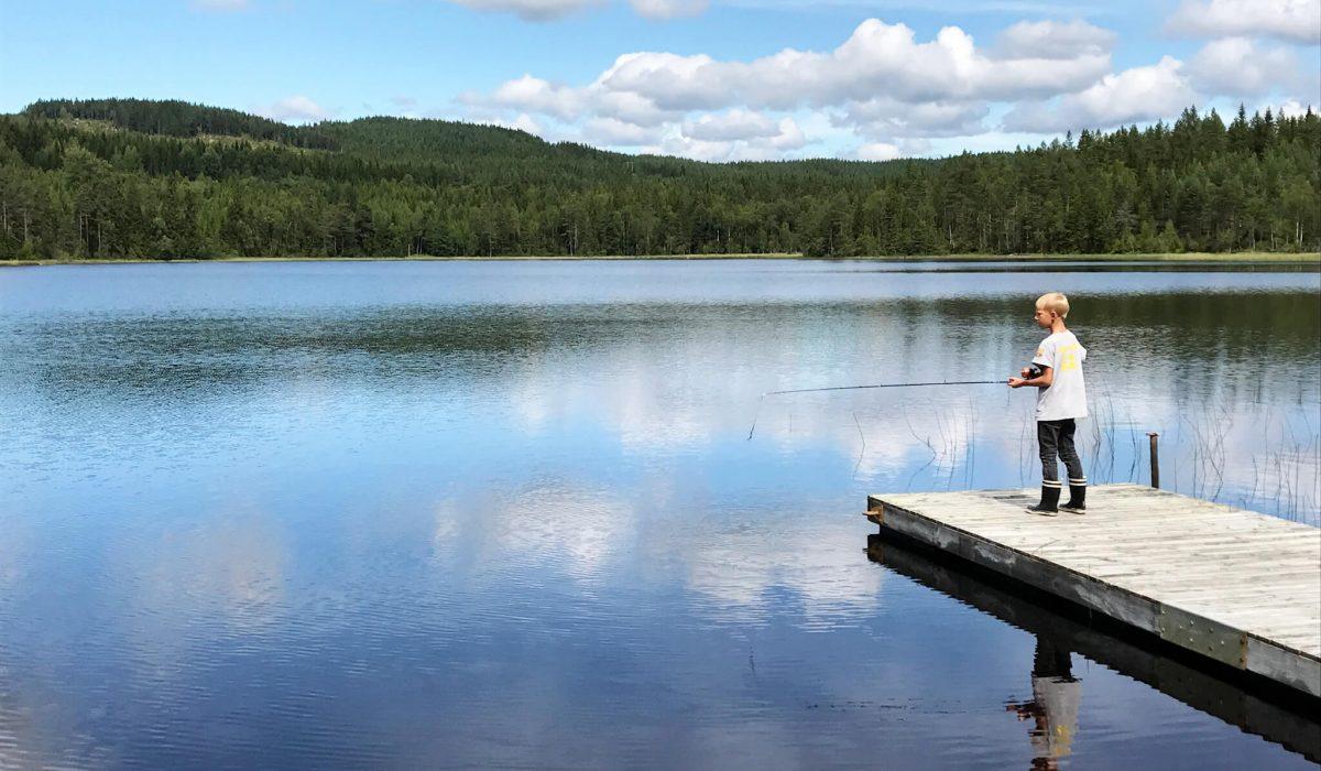 Barn står på brygga och fiskar