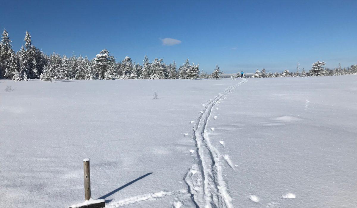 Manuella skidspår och person i horisonten