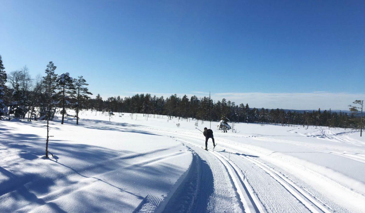 Person åker skidor i Vinterlandsskap