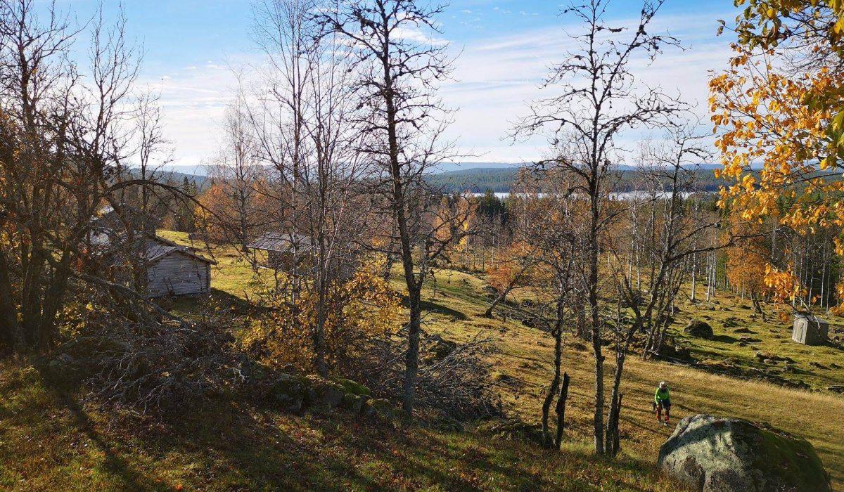 Person vandrar i en sluttning med gamla hus på hösten